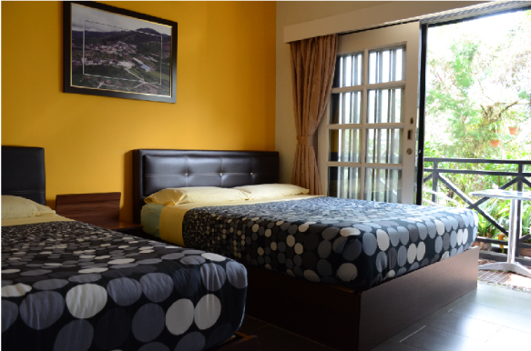 Triple room with shared bathroom  (1 queen size bed + 1 single bed)