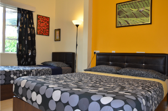 Triple rooms with shared bathroom  (1 queen size bed + 1 single bed)